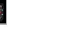 Schwarze Yo-kai Watch