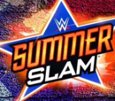 New-WWE Summerslam XI