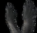 Bird-Type