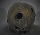 The Naked Nest