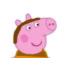 Steve Pig