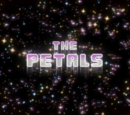 The Petals