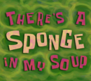 There's a Sponge in My Soup (gallery)