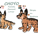 Choyo