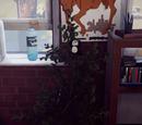 Растение Лиза