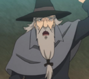The Gullible Old Mage