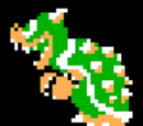 Bowser/Synopsis
