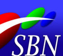 SBN 21 DWCP-TV Manila Sign On and Sign Off