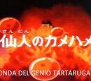 L'onda del Genio Tartaruga - L'onda del Genio