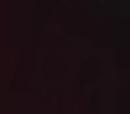 Padmashree Enterprises (India)