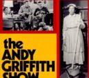 The Andy Griffith Show (book)