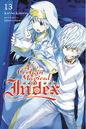 A Certain Magical Index Light Novel v13 cover.jpg
