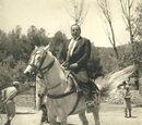 Der Reiter vom Thanneter Forst