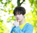 Yoon San Ha
