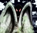 Mothman on Unsolved Mysteries