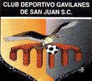 Gavilanes de San Juan del Rio