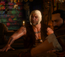 The Witcher 3 missioni