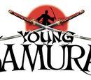 Young Samurai Series