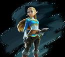 Super Smash Bros. Obliteration/Zelda & Sheik