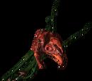 Echinops (roślina)