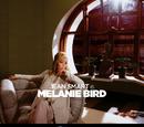 Melanie Bird/Gallery