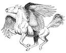 1024px-Pegasus (PSF)-1-.png