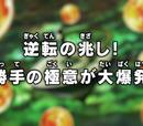 Episodio 116 (Dragon Ball Super)