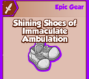 Shining Shoes of Immaculate Ambulation