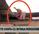 Chupa-Cu