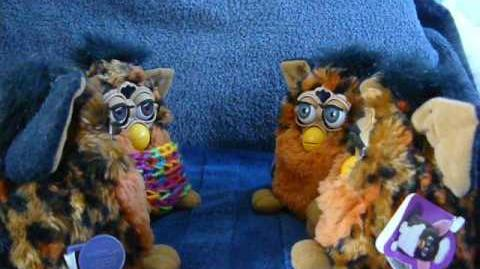 A video of Color Change Furby's talking by Anush Yaranushian on YouTube