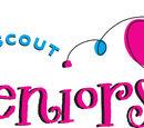 Senior Scouts