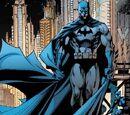 Bruce Wayne (Prime Earth) (Leostales)