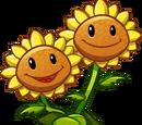 Twin Sunflower (PvZH)