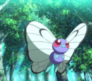 Butterfree (MS020)