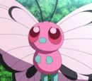 Pink Butterfree (MS020)