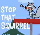 Stop That Squirrel