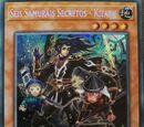 Seis Samuráis Secretos - Kizaru