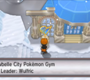 Snowbelle City Gym