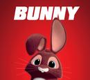 Bunny/Gallery
