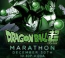 Dragon Ball Super Marathon (December 2017)