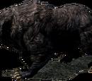 Ведмідь (Skyrim)