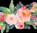 StreamClan (Licindac)//Herb Guide