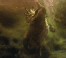Unidentified Ceratopsian