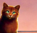 RiverClan (TheHauntedRogue)