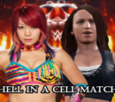 New-WWE Hell in a Cell 9