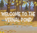 Welcome to the Vernal Pond