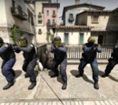 The Player (Counter-Strike)