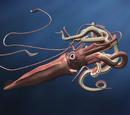 Calamar Gigante del Atlántico