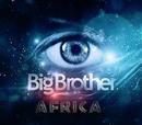 Big Brother Africa 7 (David34)