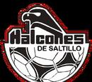 Halcones de Saltillo